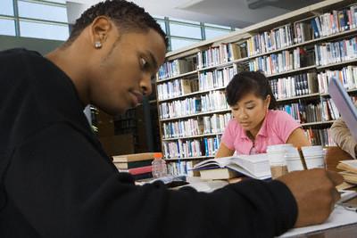study in newzealand, study newzealand, Education system in newzealand.